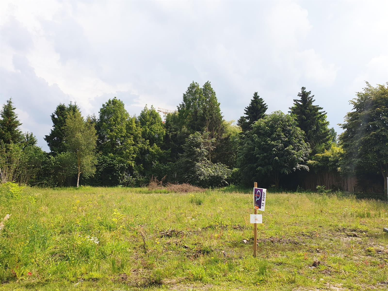 Bouwgrond nabij het bos in Latem